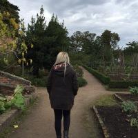 Seasonal Walk Around Calke 🍂🍄🦌