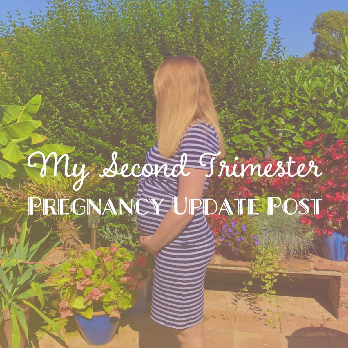 My Second Trimester So Far -  A Pregnancy Update