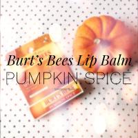 Burt's Bees Lip Balm | Pumpkin Spice