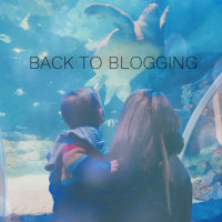 Back To Blogging | Updates & News